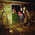 Portable Floodlights